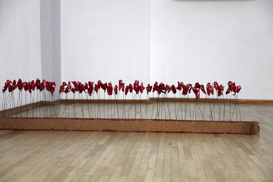 Rose rouges du Baïkal